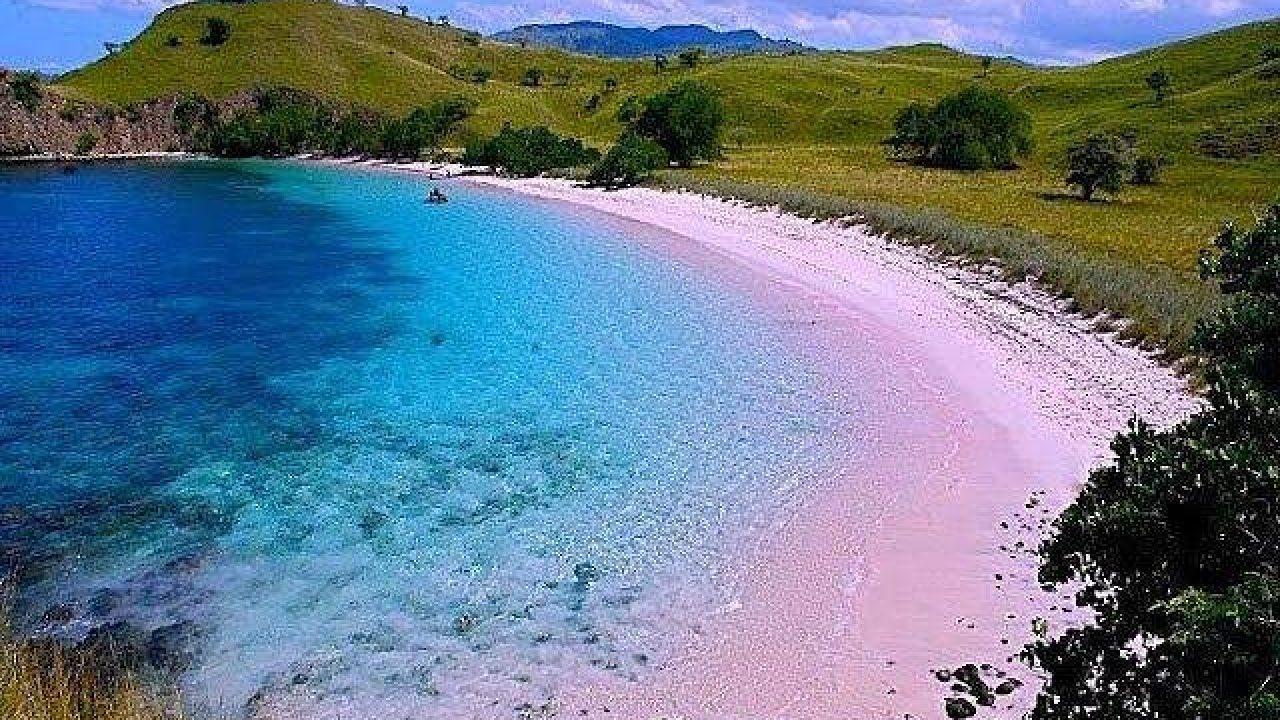 Eksotisme Pantai Pink di Lombok yang Memikat Hati